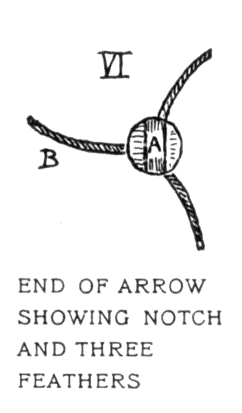 END OF ARROW SHOWING NOTCH AND THREE FEATHERS